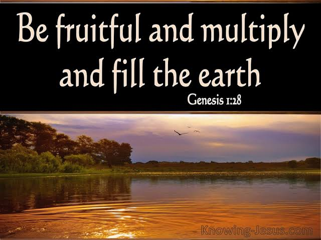 You Are Destined To Be Fruitful And Multiply
